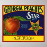 Georgia Peaches Poster