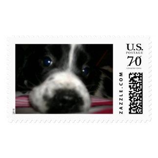 Georgia Postage