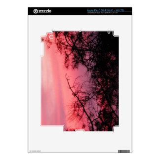Georgia Sunset Decals For iPad 3