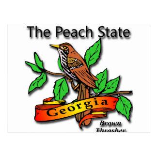 Georgia The Peach State Brown Thrasher Postcards