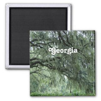 Georgia Trees 2 Inch Square Magnet