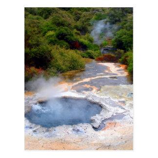 Geothermal Activity near Rotorua, New Zealand Postcard