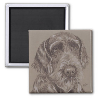 Ger. Wire-Haired Pointer Fridge Magnets