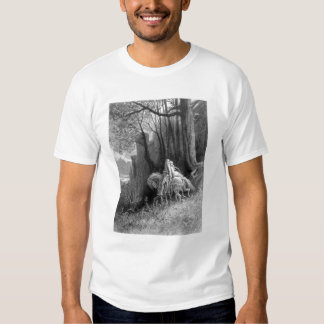 Geraint and Enid Ride Away Shirt