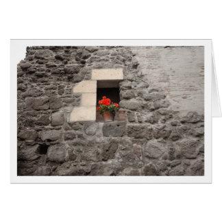 Geranio en ventana tarjeta de felicitación