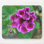 Geranio púrpura alfombrilla de raton