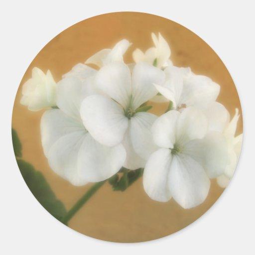 Geranios blancos 7 pegatina redonda