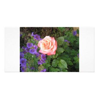 Geranios púrpuras subiós melocotón tarjetas con fotos personalizadas