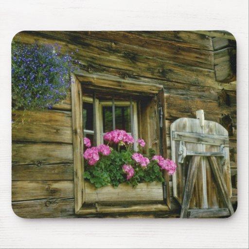 Geranios rosados en flores de la ventana alfombrillas de raton