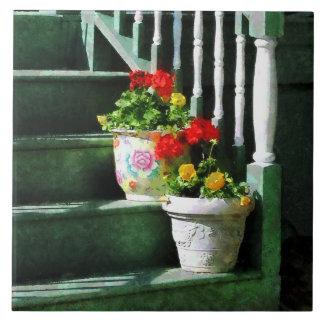 Geranios y pensamientos en pasos azulejo ceramica