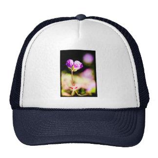 geranium and sun on black trucker hat