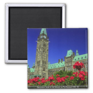 Geranium beds in full bloom on Parliament Hill, Ot Magnets