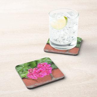 Geranium Bloom Beverage Coaster