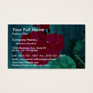Geranium bloom head, Whitby, Ontario, Canada Business Card