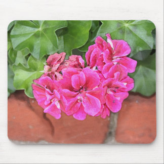 Geranium Bloom Mouse Pad