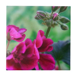 Geranium Bloom Small Square Tile