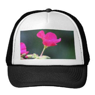 Geranium cap trucker hat