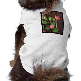 Geranium dog shirt