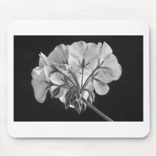 Geranium Flower In Progress Black and White Mouse Pad