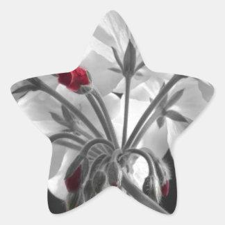 Geranium Flower In Progress Star Sticker