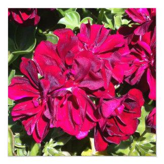 Geranium Flower Red Card