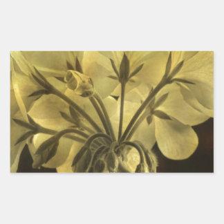 Geranium Flower Texture Rectangular Sticker