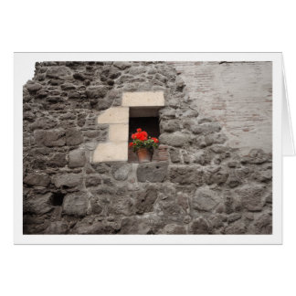 Geranium in Window Greeting Card