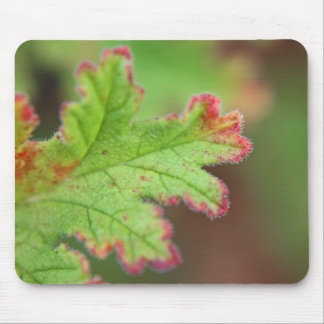Geranium Leaf Mouse Pad