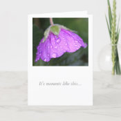 Geranium Miss You card