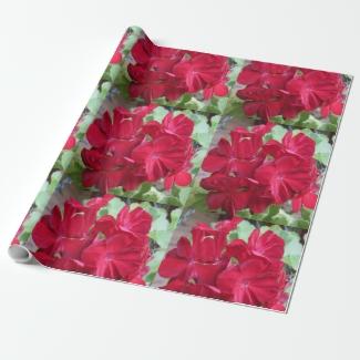 Geranium Plant Red Floral