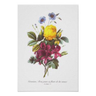 Geranium,Rose and Flax Poster