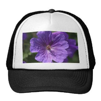 Geranium Trucker Hat