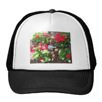 Geraniums and Bird Trucker Hat