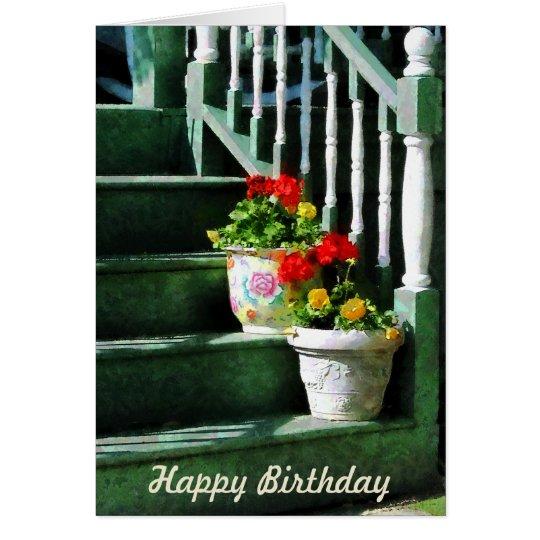 Geraniums and Pansies on Steps - Birthday Card