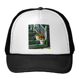Geraniums and Pansies on Steps Hats