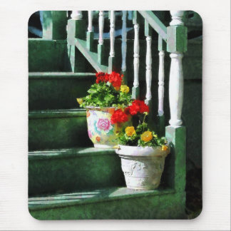 Geraniums and Pansies on Steps Mouse Pad