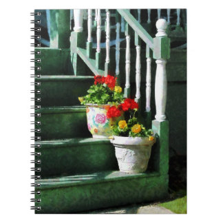 Geraniums and Pansies on Steps Spiral Notebooks