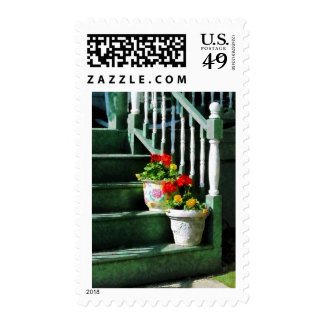 Geraniums and Pansies on Steps Postage