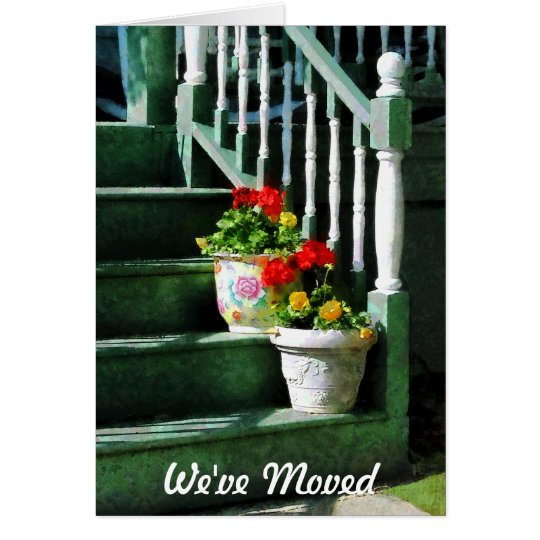 Geraniums and Pansies on Steps - We've Moved Card