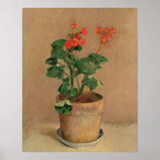 Geraniums in a Pot c 1905 oil on canvas Print
