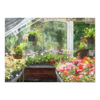 Geraniums in Greenhouse Card