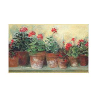 Geraniums in Pots Gallery Wrap Canvas