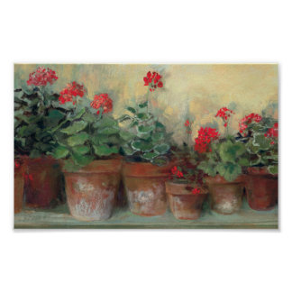 Geraniums in Pots Poster