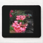 Geraniums. Pelargonium flowers. Mouse Pad