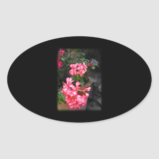 Geraniums. Pelargonium flowers. Oval Sticker
