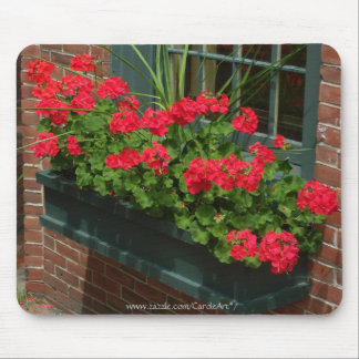Geraniums Red Green Window Box Mouse Pad