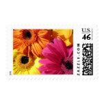 gerber-4 postage stamps