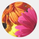 gerber-4 round sticker