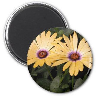 Gerber Daisey 2 Inch Round Magnet