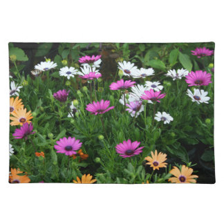 gerber daisies field multi colored flower place mats